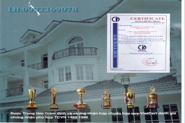 Công ty Cổ Phần Phát Triển Xây Dựng Nhà Việt
